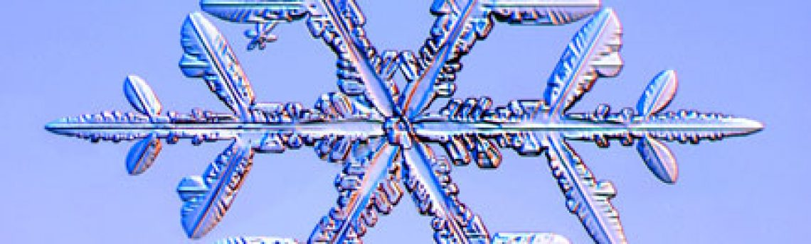 Winter Weather and Mass Guidelines